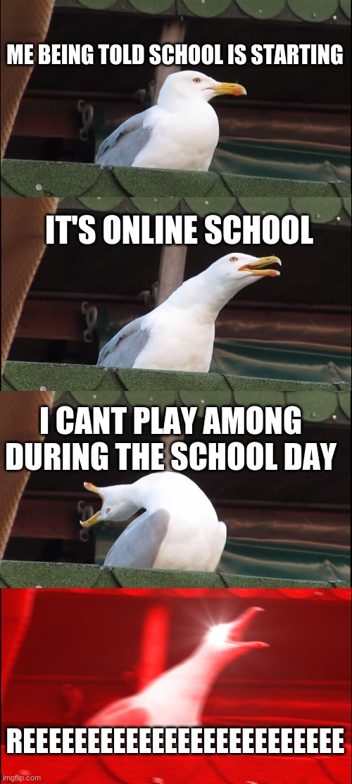 Inhaling Seagull Meme |  ME BEING TOLD SCHOOL IS STARTING; IT'S ONLINE SCHOOL; I CANT PLAY AMONG DURING THE SCHOOL DAY; REEEEEEEEEEEEEEEEEEEEEEEEE | image tagged in memes,inhaling seagull | made w/ Imgflip meme maker