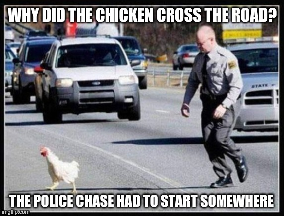 It's as good a punchline as any |  WHY DID THE CHICKEN CROSS THE ROAD? THE POLICE CHASE HAD TO START SOMEWHERE | image tagged in why the chicken cross the road | made w/ Imgflip meme maker