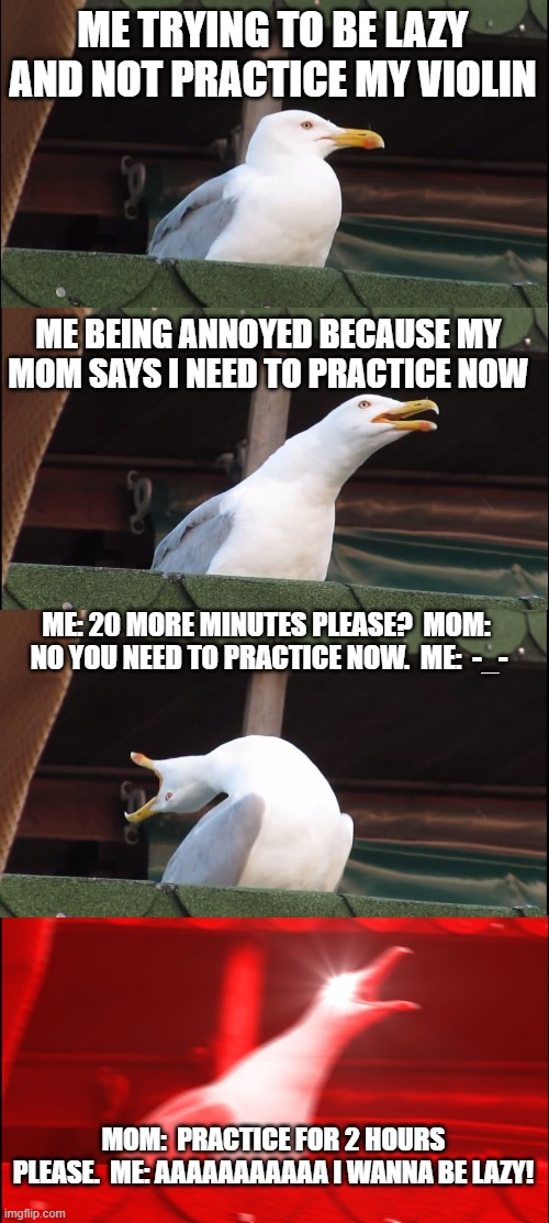 Inhaling Seagull |  ME TRYING TO BE LAZY AND NOT PRACTICE MY VIOLIN; ME BEING ANNOYED BECAUSE MY MOM SAYS I NEED TO PRACTICE NOW; ME: 20 MORE MINUTES PLEASE?  MOM:  NO YOU NEED TO PRACTICE NOW.  ME:  -_-; MOM:  PRACTICE FOR 2 HOURS PLEASE.  ME: AAAAAAAAAAA I WANNA BE LAZY! | image tagged in memes,inhaling seagull | made w/ Imgflip meme maker