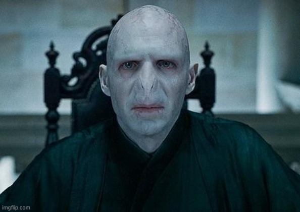 Lord Voldemort | image tagged in lord voldemort | made w/ Imgflip meme maker