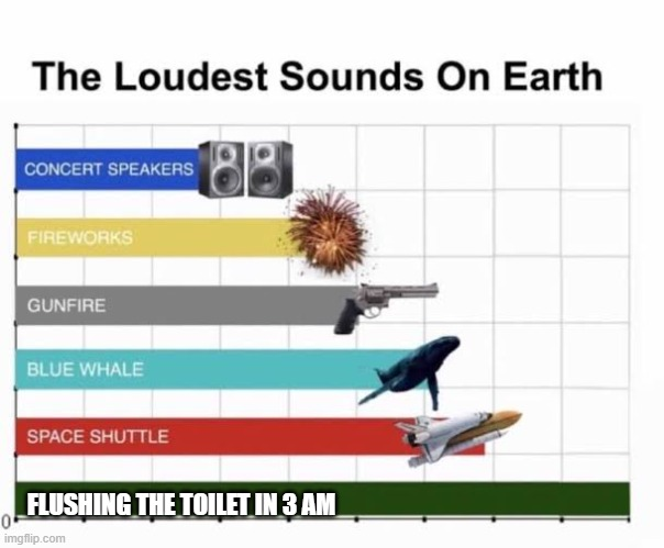 The Loudest Sounds on Earth |  FLUSHING THE TOILET IN 3 AM | image tagged in the loudest sounds on earth | made w/ Imgflip meme maker
