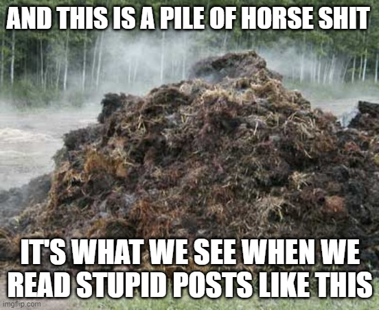 Horse Shit |  AND THIS IS A PILE OF HORSE SHIT; IT'S WHAT WE SEE WHEN WE READ STUPID POSTS LIKE THIS | image tagged in packers,green bay packers,horse shit,nonsense,bullshit | made w/ Imgflip meme maker