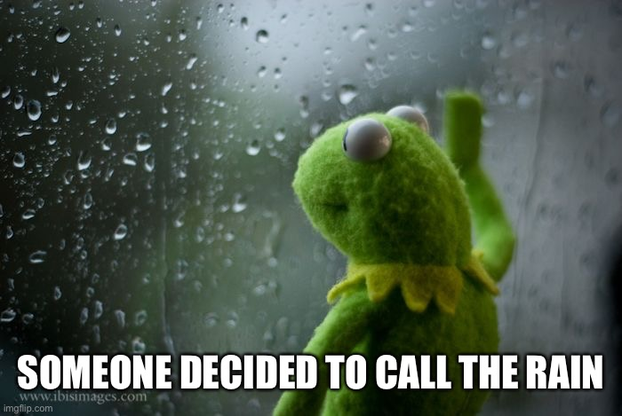 kermit window | SOMEONE DECIDED TO CALL THE RAIN | image tagged in kermit window | made w/ Imgflip meme maker