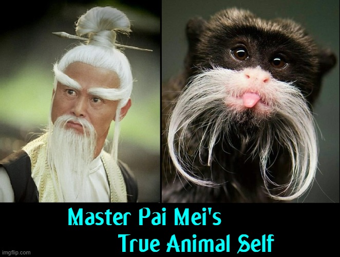 Kung Fu Master in Kill Bill: Volume 2 |  Master Pai Mei's                 True Animal Self | image tagged in vince vance,kill bill,monkey,memes,kung fu,quentin tarantino | made w/ Imgflip meme maker