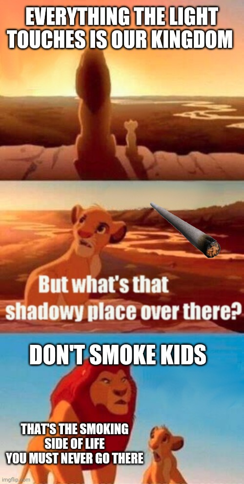 Simba Shadowy Place Meme |  EVERYTHING THE LIGHT TOUCHES IS OUR KINGDOM; DON'T SMOKE KIDS; THAT'S THE SMOKING SIDE OF LIFE YOU MUST NEVER GO THERE | image tagged in memes,simba shadowy place | made w/ Imgflip meme maker