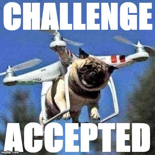 Flying pug challenge accepted | image tagged in flying pug challenge accepted,flying pug,pugs,pug,pug life,custom template | made w/ Imgflip meme maker