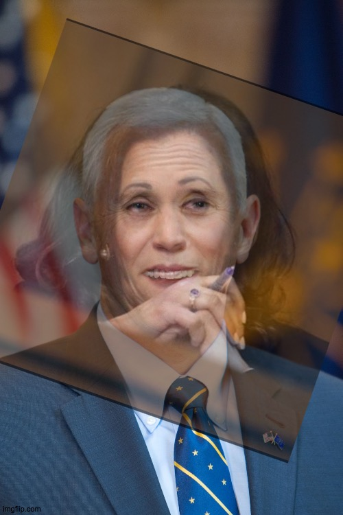 Fl'eye to eye | image tagged in kamala,pence,fly,debate,woo,wee | made w/ Imgflip meme maker