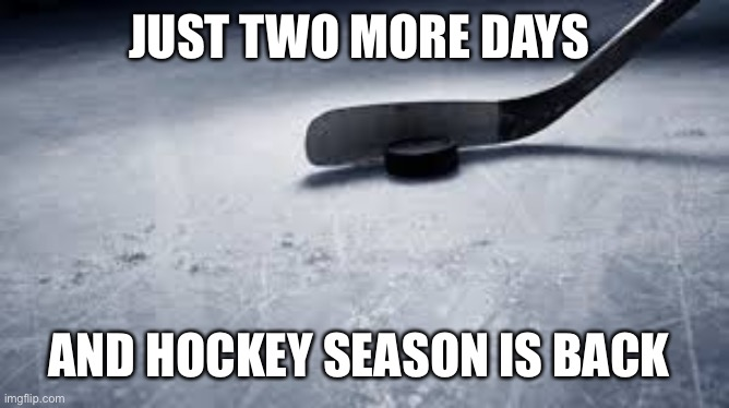 hockey |  JUST TWO MORE DAYS; AND HOCKEY SEASON IS BACK | image tagged in hockey | made w/ Imgflip meme maker