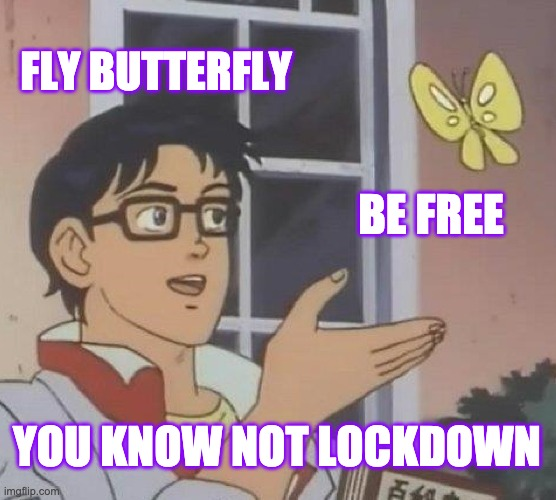 fly butterfly be free you know not lockdown |  FLY BUTTERFLY; BE FREE; YOU KNOW NOT LOCKDOWN | image tagged in memes,is this a pigeon,free,butterfly,lockdown,covid-19 | made w/ Imgflip meme maker