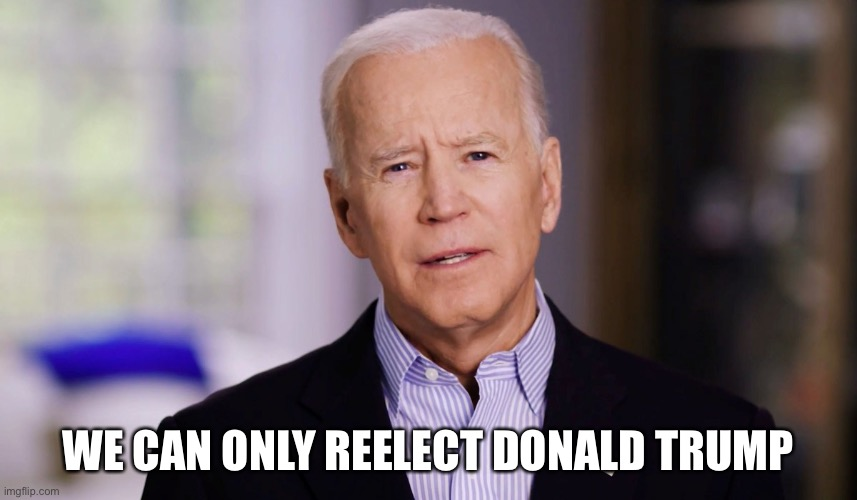 WE CAN ONLY REELECT DONALD TRUMP | image tagged in joe biden 2020 | made w/ Imgflip meme maker