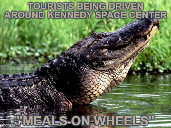 "Those gators looking at us are thinking one thing... |  TOURISTS BEING DRIVEN AROUND KENNEDY SPACE CENTER; ""MEALS ON WHEELS"" 