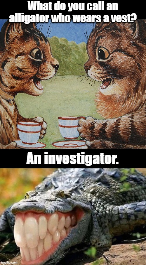 An investigator |  What do you call an alligator who wears a vest? An investigator. | image tagged in funny | made w/ Imgflip meme maker