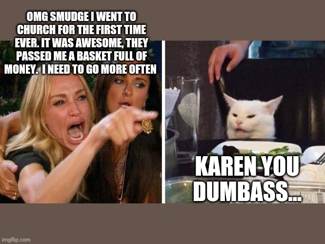 Smudge the cat |  OMG SMUDGE I WENT TO CHURCH FOR THE FIRST TIME EVER. IT WAS AWESOME, THEY PASSED ME A BASKET FULL OF MONEY.  I NEED TO GO MORE OFTEN; KAREN YOU DUMBASS... | image tagged in smudge the cat | made w/ Imgflip meme maker