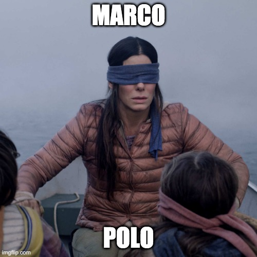 Bird Box |  MARCO; POLO | image tagged in memes,bird box | made w/ Imgflip meme maker