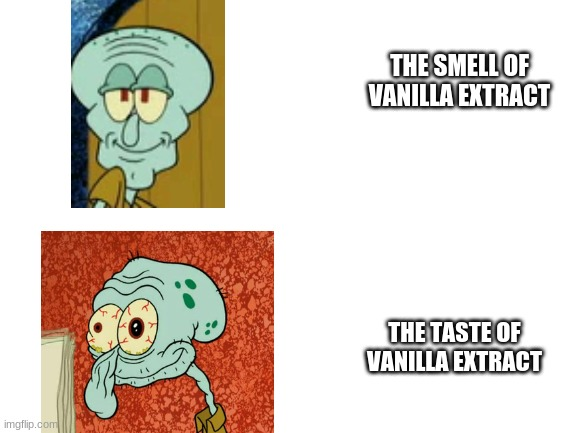 blank white template |  THE SMELL OF VANILLA EXTRACT; THE TASTE OF VANILLA EXTRACT | image tagged in blank white template | made w/ Imgflip meme maker