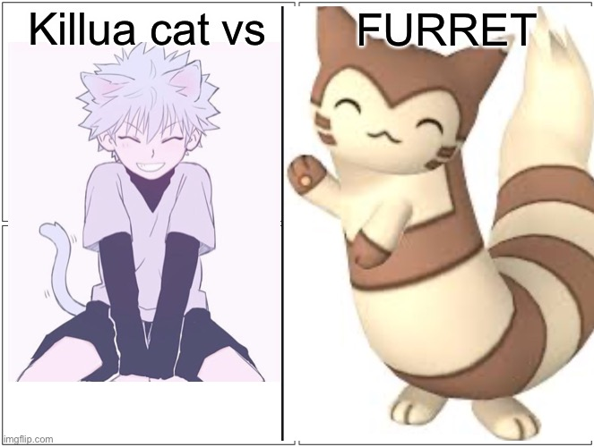 THIS IS GOOD |  Killua cat vs; FURRET | image tagged in anime,cat | made w/ Imgflip meme maker