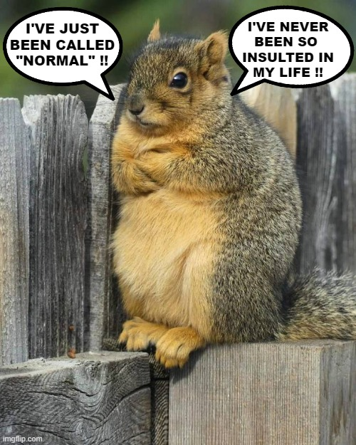 "The Wizard of Goslar |  I'VE NEVER BEEN SO  INSULTED IN MY LIFE !! I'VE JUST BEEN CALLED ""NORMAL"" !! 
