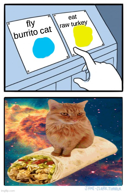 Two Buttons |  eat raw turkey; fly burrito cat | image tagged in memes,two buttons | made w/ Imgflip meme maker