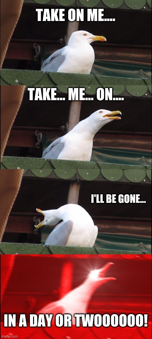 Take On Me (by aha) |  TAKE ON ME.... TAKE... ME... ON.... I'LL BE GONE... IN A DAY OR TWOOOOOO! | image tagged in memes,inhaling seagull,song lyrics,song,songs | made w/ Imgflip meme maker