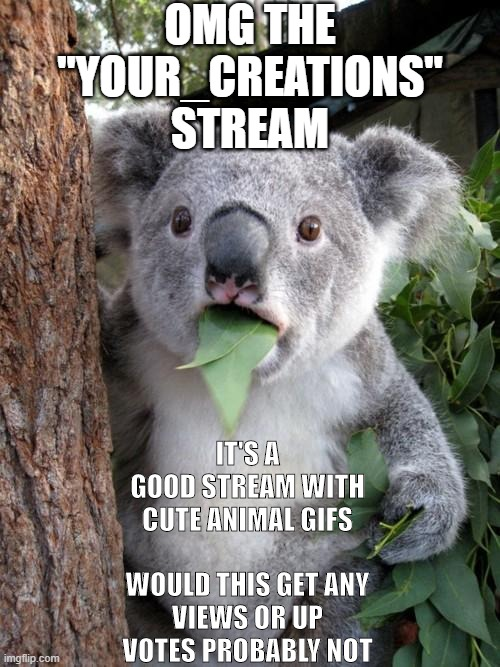 "follow the Your_creations stream you can post there too |  OMG THE ""YOUR_CREATIONS"" STREAM; IT'S A GOOD STREAM WITH CUTE ANIMAL GIFS   WOULD THIS GET ANY VIEWS OR UP VOTES PROBABLY NOT 