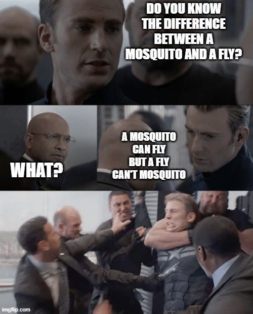 Captain america elevator |  DO YOU KNOW THE DIFFERENCE BETWEEN A MOSQUITO AND A FLY? A MOSQUITO CAN FLY BUT A FLY CAN'T MOSQUITO; WHAT? | image tagged in captain america elevator,funny,fight,elevator,lol,lmao | made w/ Imgflip meme maker