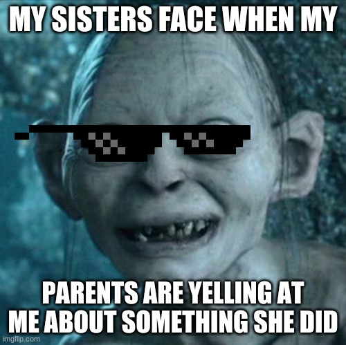 Gollum Meme |  MY SISTERS FACE WHEN MY; PARENTS ARE YELLING AT ME ABOUT SOMETHING SHE DID | image tagged in memes,gollum | made w/ Imgflip meme maker