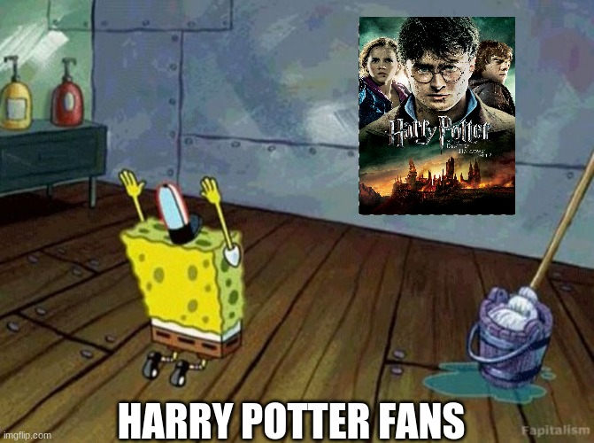 Dillan's Funny Memes |  HARRY POTTER FANS | image tagged in harry potter | made w/ Imgflip meme maker