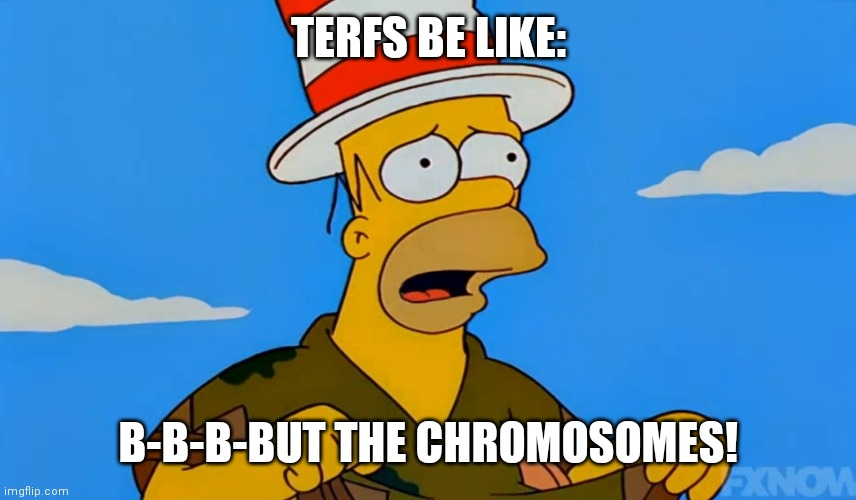 But the chromosomes |  TERFS BE LIKE:; B-B-B-BUT THE CHROMOSOMES! | image tagged in homer poncho,homer simpson,simpsons | made w/ Imgflip meme maker