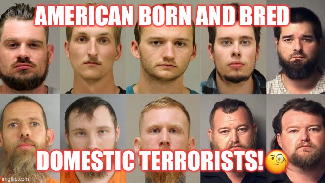 Homegrown Terror |  AMERICAN BORN AND BRED; DOMESTIC TERRORISTS!🧐 | image tagged in terrorists,racist,donald trump,trump supporters,maga,basket of deplorables | made w/ Imgflip meme maker