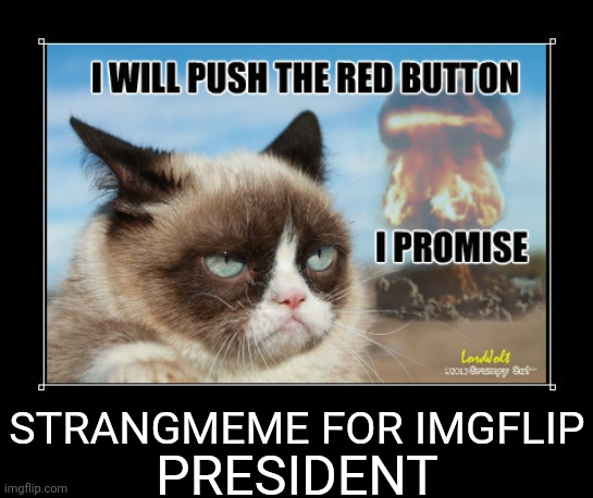 Vote Dr.Strangmeme For President |  STRANGMEME FOR IMGFLIP; PRESIDENT | image tagged in the opposition party,drstrangmeme,imgflip,president,grumpy cat | made w/ Imgflip meme maker