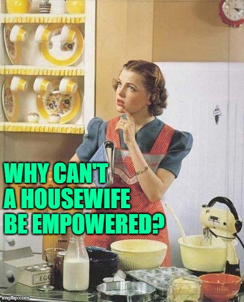 Empowered Housewife |  WHY CAN'T A HOUSEWIFE BE EMPOWERED? | image tagged in vintage kitchen query,housewife,empowering,good question,women,so true memes | made w/ Imgflip meme maker