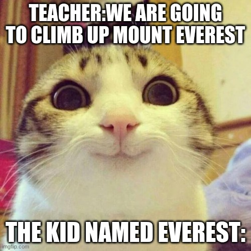 kill me for typing these exact words |  TEACHER:WE ARE GOING TO CLIMB UP MOUNT EVEREST; THE KID NAMED EVEREST: | image tagged in memes,smiling cat,mount everest | made w/ Imgflip meme maker
