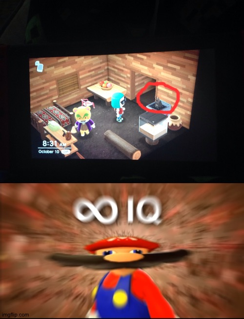 My animal crossing neighbor Nate did this... | image tagged in infinity iq mario,animal crossing | made w/ Imgflip meme maker