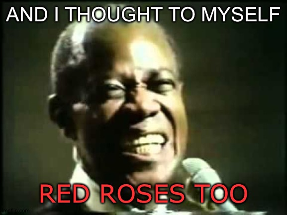 AND I THOUGHT TO MYSELF RED ROSES TOO | made w/ Imgflip meme maker