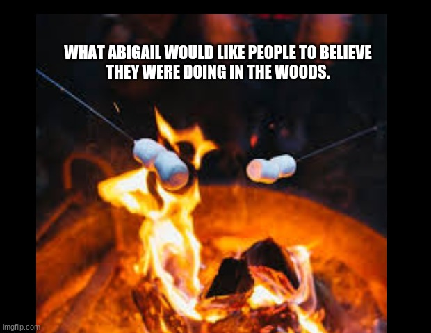 Crucible |  WHAT ABIGAIL WOULD LIKE PEOPLE TO BELIEVE THEY WERE DOING IN THE WOODS. | image tagged in witch | made w/ Imgflip meme maker
