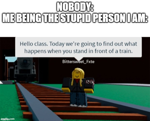 dumb roblox person |  NOBODY: ME BEING THE STUPID PERSON I AM: | image tagged in dumb roblox person | made w/ Imgflip meme maker