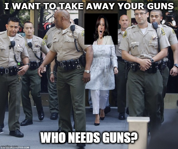 Democrat hypocrisy |  I WANT TO TAKE AWAY YOUR GUNS; WHO NEEDS GUNS? | image tagged in kamala harris,2nd amendment,gun control | made w/ Imgflip meme maker