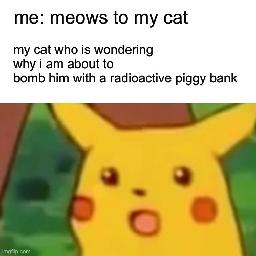 meow meow meow meow |  me: meows to my cat; my cat who is wondering why i am about to  bomb him with a radioactive piggy bank | image tagged in memes,surprised pikachu,cats,cat | made w/ Imgflip meme maker