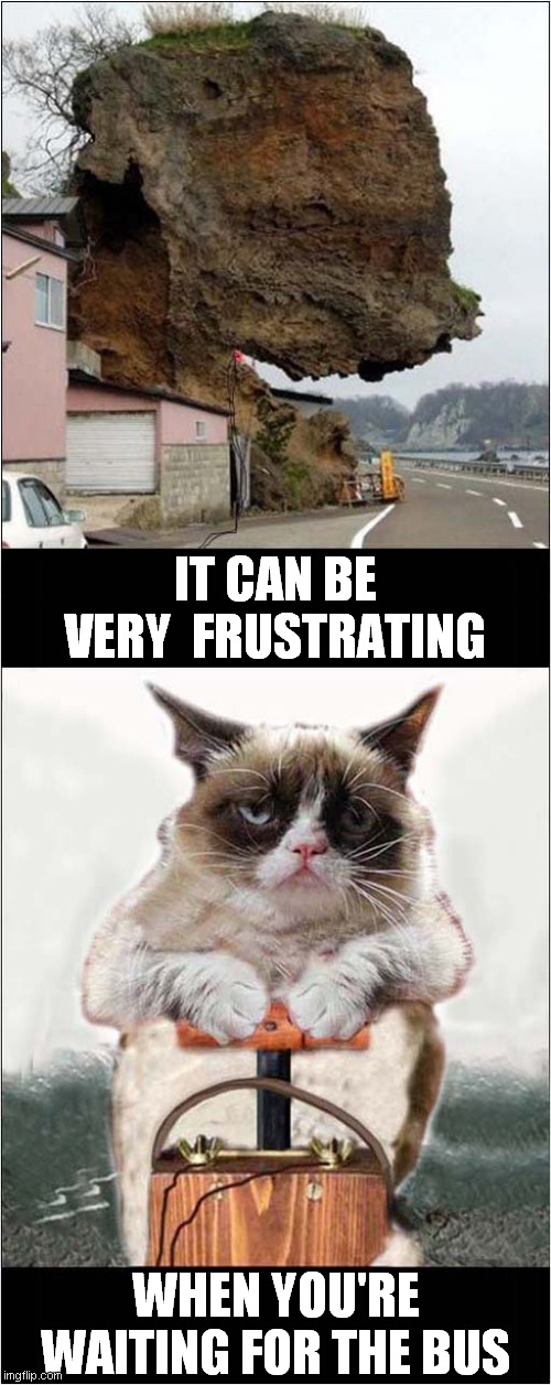 Grumpy Waits |  IT CAN BE VERY  FRUSTRATING; WHEN YOU'RE WAITING FOR THE BUS | image tagged in grumpy cat,explosion,rock,bus | made w/ Imgflip meme maker