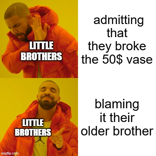 fax |  admitting that they broke the 50$ vase; LITTLE BROTHERS; blaming it their older brother; LITTLE BROTHERS | image tagged in memes,drake hotline bling | made w/ Imgflip meme maker