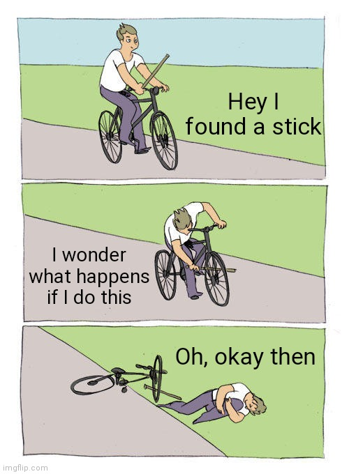 r/bonehurtingjuice |  Hey I found a stick; I wonder what happens if I do this; Oh, okay then | image tagged in memes,bike fall | made w/ Imgflip meme maker