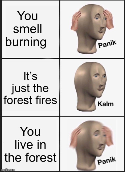 Burning forests |  You smell burning; It's just the forest fires; You live in the forest | image tagged in memes,panik kalm panik | made w/ Imgflip meme maker