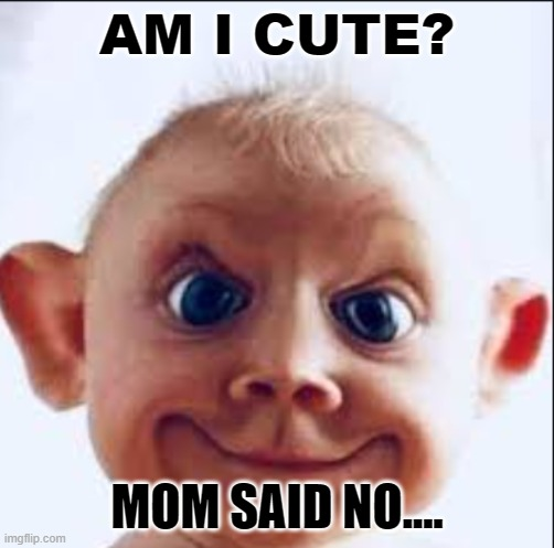Ugly baby |  AM I CUTE? MOM SAID NO.... | image tagged in funny | made w/ Imgflip meme maker