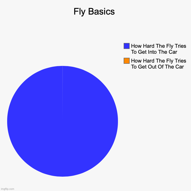 Fly Basics | How Hard The Fly Tries To Get Out Of The Car, How Hard The Fly Tries To Get Into The Car | image tagged in charts,pie charts | made w/ Imgflip chart maker