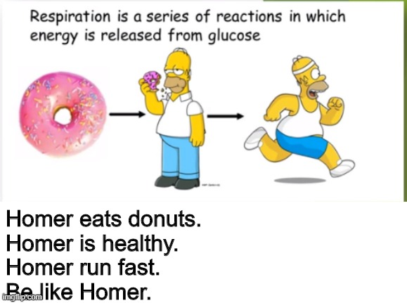Online classes in 2020 (respiration) |  Homer eats donuts. Homer is healthy. Homer run fast. Be like Homer. | image tagged in funny,memes,simpsons,donuts,healthy | made w/ Imgflip meme maker