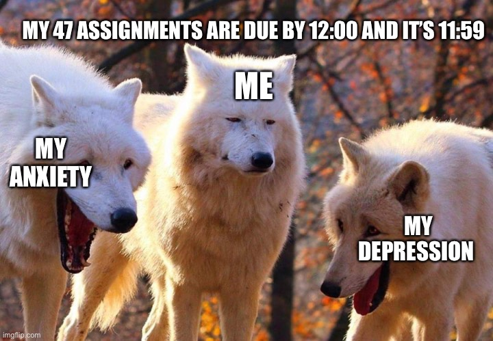 Laughing dogs with pissed dog |  MY 47 ASSIGNMENTS ARE DUE BY 12:00 AND IT'S 11:59; ME; MY ANXIETY; MY DEPRESSION | image tagged in laughing dogs with pissed dog | made w/ Imgflip meme maker