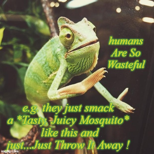 It has got a point |  humans Are So Wasteful; e.g. they just smack a *Tasty, Juicy Mosquito*  like this and just...Just Throw It Away ! | image tagged in slow clap chameleon,wise master,mind blown,food for thought,waste | made w/ Imgflip meme maker