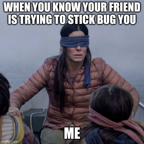 get Stick buged |  WHEN YOU KNOW YOUR FRIEND IS TRYING TO STICK BUG YOU; ME | image tagged in memes,bird box | made w/ Imgflip meme maker