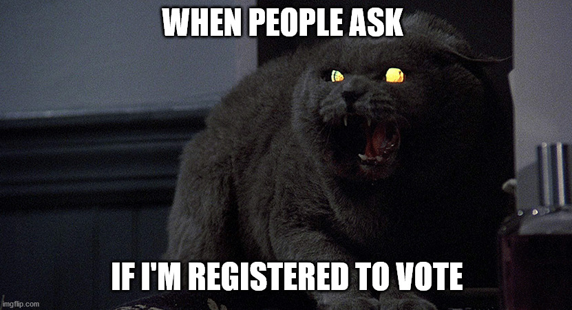 Voting Purrsuation |  WHEN PEOPLE ASK; IF I'M REGISTERED TO VOTE | image tagged in voting,funny cat memes,2020 elections,election 2020,cat meme,grumpy cat | made w/ Imgflip meme maker