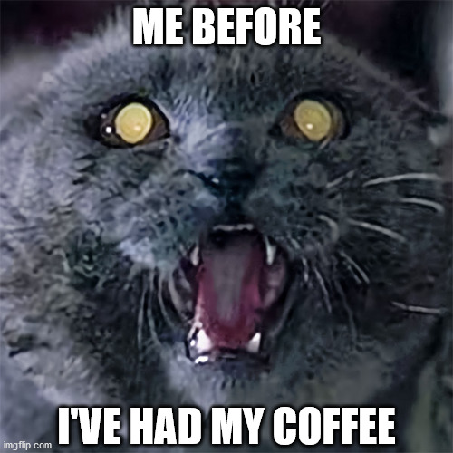 Rise and the Shining |  ME BEFORE; I'VE HAD MY COFFEE | image tagged in grumpy cat,cat meme,coffee,coffee addict,horror movie,pet sematary | made w/ Imgflip meme maker